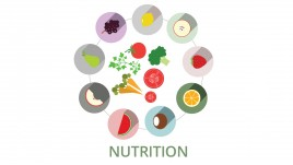 The Key to Nutrition and Wellness