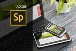 Adobe Spark Training