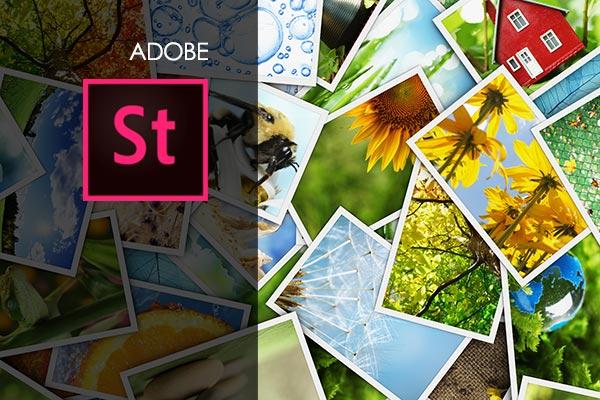 Adobe Stock Training