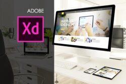 Adobe XD Training